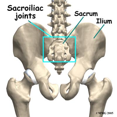 spinal și sala de tratament articular vitamine pentru durerea în articulații și ligamente