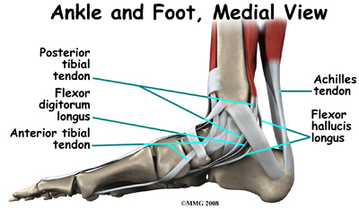 Physical Therapy in Traverse City & Northern Michigan for